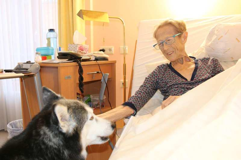 Eine ältere Frau sitzt aufrecht in einem Bett und streichelt einen Husky.